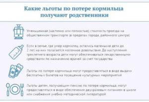 Социальная Поддержка Детей При Потере Кормильца В Московской Области