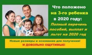 Что Дают За Третьего Ребёнка В 2020 Году Рязань