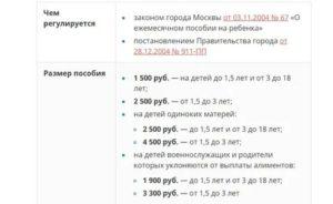 Размер Единовременного Пособия На Рождение Ребенка В 2020 Году В Красноярске