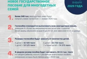 Указа № 431 помощь многодетным в 2020 году
