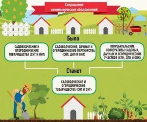 Снт Как Оформить Землю Общего Пользования В Собственность 2020 Году