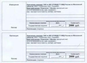 Сколько Стоит Пошлина По Замене Водительских Прав В Москве 019 Году