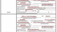 Можно ли заплатить госпошлину в налоговую за организацию физическому лицу