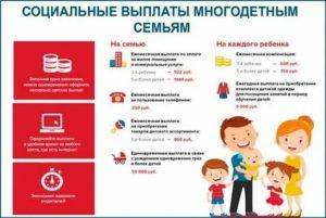 Какие субсидии положены многодетным семьям в ленинградской области 2020