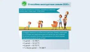 Льготы И Пособия Многодетным Семьям В 2020 Году Рк